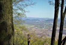 důl ČSA je vidět pouze úzkými průzory mezi stromy